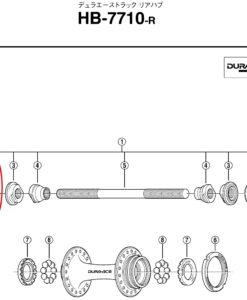 シマノ トラックハブナットM10 Y24790020